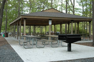 Picnic shelter at Shark River Park